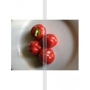 POIVRON Mini bell red