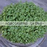 graines germées bio - semences bio AGROSEMENS