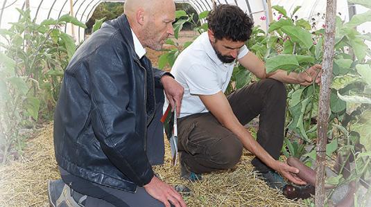 ferme semenciere 100% Bio